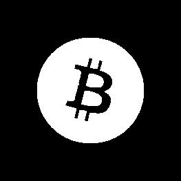 Bitcoin v beznom zivote ikona