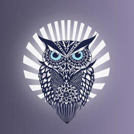 Owl mark ashkenazi