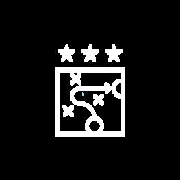 Seo advanced icon